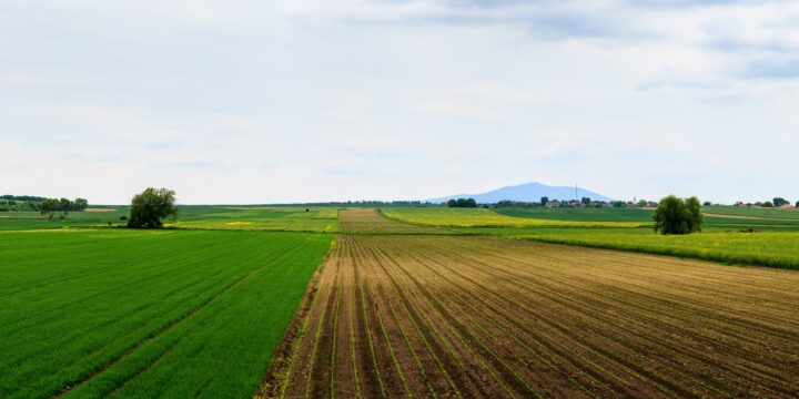 Regenerative Agriclture